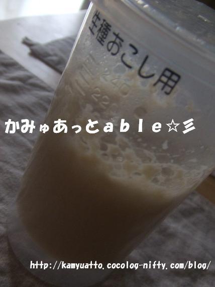 2008_09210003